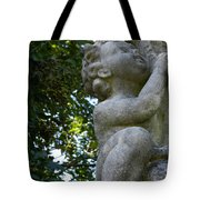The Baby At Gibraltar 2 Tote Bag
