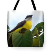 The Banaquit Of Costa Rica Tote Bag