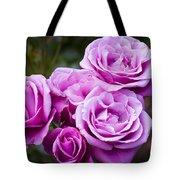 The Barbara Streisand Rose Tote Bag