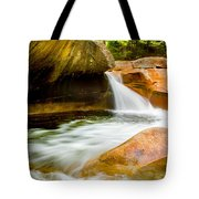 The Basin Tote Bag