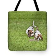 The Bassets Tote Bag