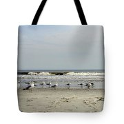The Beach Boys Tote Bag by Skip Willits