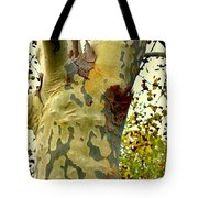 The Beatiful Sycamore Tote Bag