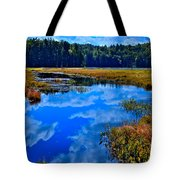The Beautiful Cary Lake - Old Forge New York Tote Bag