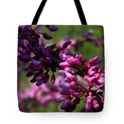 The Beautiful Redbud Tree Tote Bag