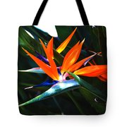 The Beauty Of A Bird Of Paradise Tote Bag