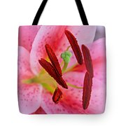 The Beauty Of A Stargazer Tote Bag