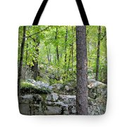 The Beauty Of Boulder Field Tote Bag