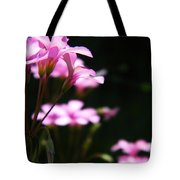 The Beauty Of Small Things 2 Tote Bag