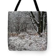 The Beauty Of Winter Tote Bag