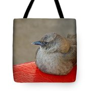 The Beggar Tote Bag