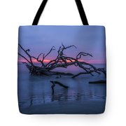 The Beginning Tote Bag