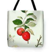 The Belle Scarlet Apple Tote Bag by Barbara Cotton