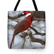 The Best Of The Season.. Tote Bag