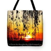 The Bible Jeremiah Twentynine Tote Bag