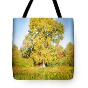The Big Autumn Poplar Tote Bag