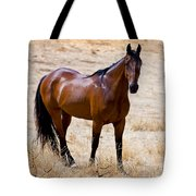 The Big Bay Tote Bag