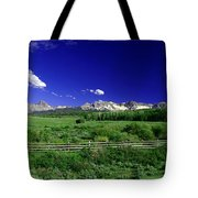 The Big Picture Tote Bag