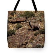 The Bighorn Uwe Tote Bag