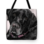 The Black Lab Sweetheart Tote Bag