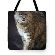 The Bobcat Tote Bag by Saija  Lehtonen