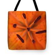 The Botanical Illusion Tote Bag