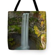 The Brandywine Plunge Tote Bag