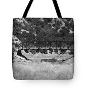 The Bridge 13 Tote Bag