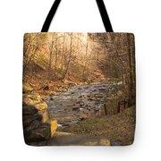 The Brook Tote Bag