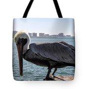 The Brown Pelican  Tote Bag
