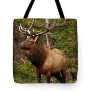 The Bull Elk Tote Bag