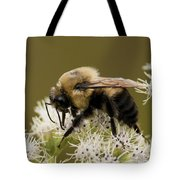 The Bumble Bee.. Tote Bag