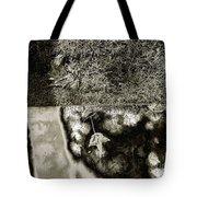 The Burning Shadows Tote Bag