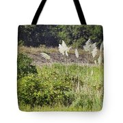 The Bushes Tote Bag