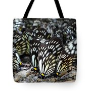 The Butterfly Gathering 2 Tote Bag