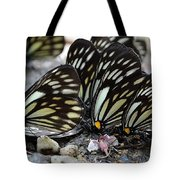 The Butterfly Gathering Tote Bag