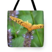 The Butterfly Wins Tote Bag