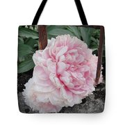 The Buxom Cabbage Rose Tote Bag
