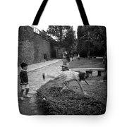 The Cartwheel Tote Bag