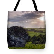 The Cat Stone Tote Bag