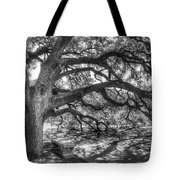 The Century Oak Tote Bag