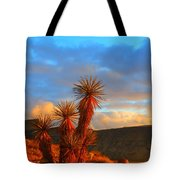 The Cerbat Foothills Tote Bag