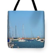 The Chicago Lighthouse Tote Bag by Christine Till