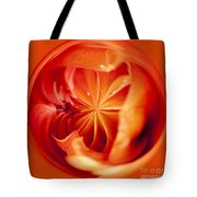 The Circular World Of David Howard Tote Bag by Anne Gilbert