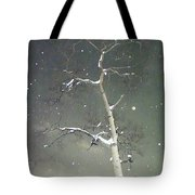 The Cold Bones Of Trees At Night Tote Bag