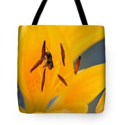 The Collector 7456 Tote Bag