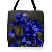 The Color Blue V6 Tote Bag