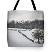 The Color Of Winter - Bw Tote Bag