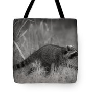 The Coon Walk Tote Bag
