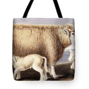 The Cotswold Breed Tote Bag